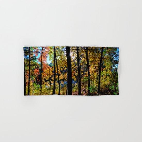 Walden Pond Autumn Forest  in Concord Massachusetts by olenaart