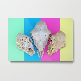Triple Skulls on Striped Background Metal Print