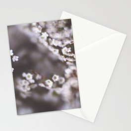 The Smallest White Flowers 03 Stationery Cards