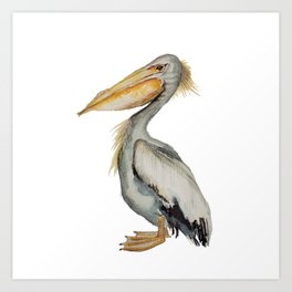 Watercolor Pelican  Art Print