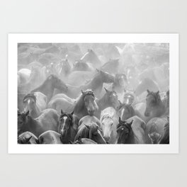 Rapa 1 Art Print