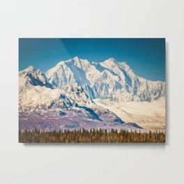 Alaska Range, near South Pull Out, Denali National Park, Alaska Metal Print
