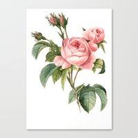 botanical Canvas Prints featuring Botanical by Goga Alexandra