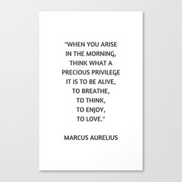 Stoic Philosophy Quote - Marcus Aurelius - What a precious privilege it is to be alive Canvas Print
