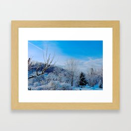 Good Morning Winter Framed Art Print