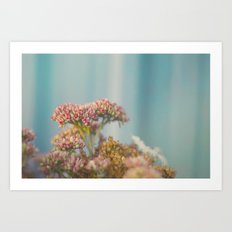 Sunset Flowers Art Print