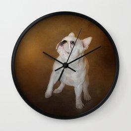 Little Beggar - White French Bulldog Wall Clock