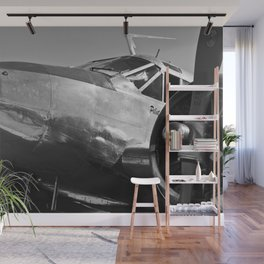 Airplane Nose Wall Mural