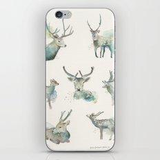 Deer Study iPhone & iPod Skin