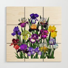 Iris garden Wood Wall Art