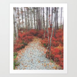 Autumn Wanderlust Art Print