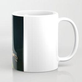 Brian Fallon - The Revival Tour Coffee Mug
