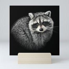 A Gentle Raccoon Mini Art Print