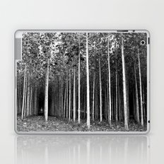 Edge of the Forest Laptop & iPad Skin