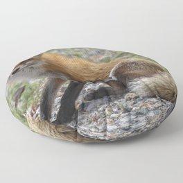 Itchy Fox Floor Pillow