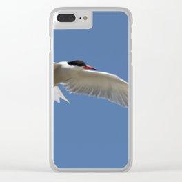 Flying Bird - Blue Sky Clear iPhone Case