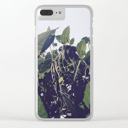 Soybean Paradise Clear iPhone Case