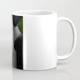 Giant Panda Cub Coffee Mug