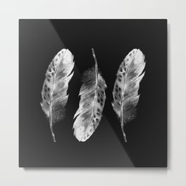 Three feathers on black background Metal Print