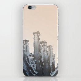 Cacti photo, soft palette, iPhone Skin