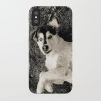 georgia iPhone & iPod Cases featuring Georgia by Sydney S Photography