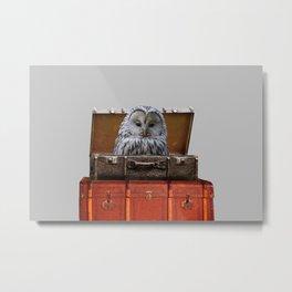 Grey Owl in old suitcases  Metal Print