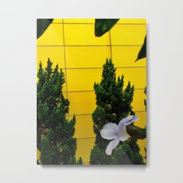Talk of Iris and Pine Metal Print