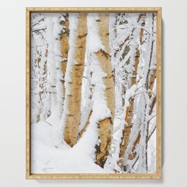 Snow Covered Birch Trees Serving Tray