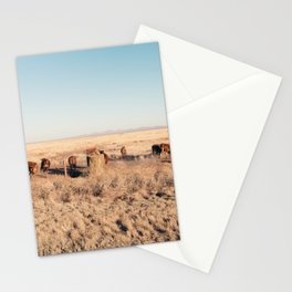West Texas Stampede Stationery Cards
