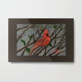 Male Cardinal DP151210a-14 Metal Print