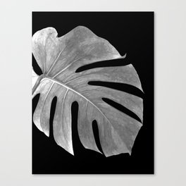 Black and White Monstera Leaf Canvas Print
