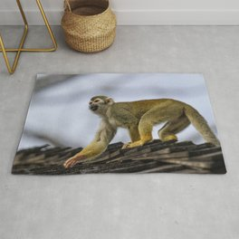 Monkey on the Roof Rug