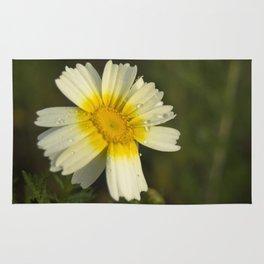 Daisy #5 Rug