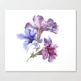 Bunch of flowers Canvas Print