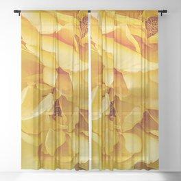 Yellow Petals Sheer Curtain