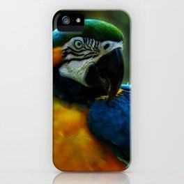 Macaw Portrait iPhone Case
