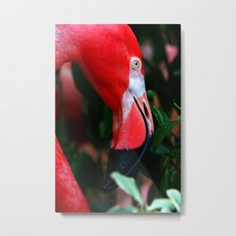 A Delicate Shade of Power Metal Print