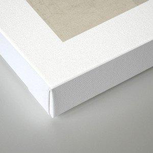 color block - gray Canvas Print
