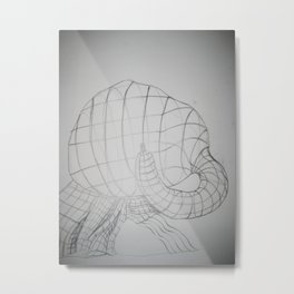 Dimensions of a Squash Metal Print