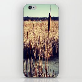 Cattails iPhone Skin