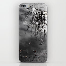 Cloudy Day Reflection iPhone Skin