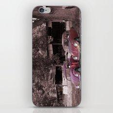 Lovebugs iPhone & iPod Skin