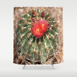 Red Cactus Blossoms Shower Curtain