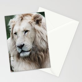 White stands out in the desert Stationery Cards