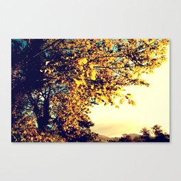 MidSummer Mass Canvas Print