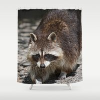 racoon Shower Curtains featuring Racoon by MehrFarbeimLeben