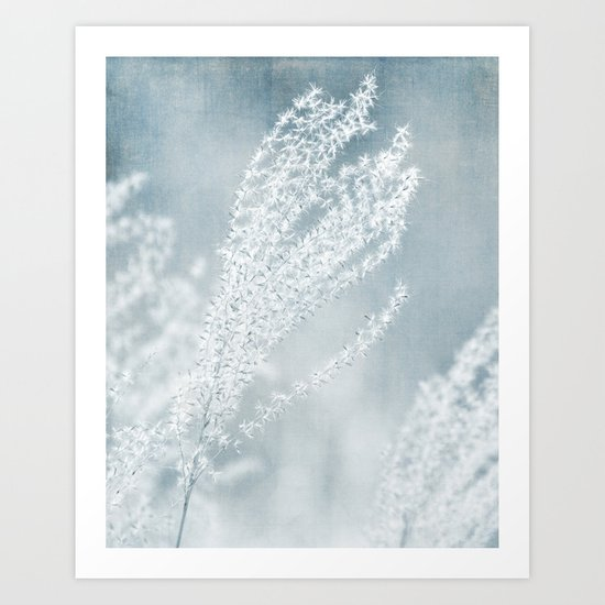 WINTER SEEDS Art Print