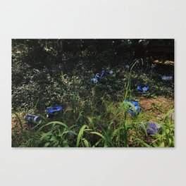 Richmond / Frat Row Still Life Canvas Print
