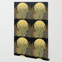 """Golden aloe Zebra midnight sun"" Wallpaper"