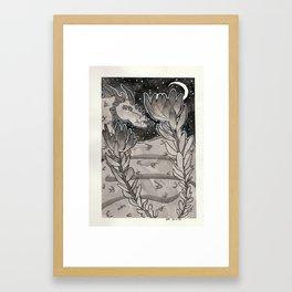 Leucadendron Framed Art Print
